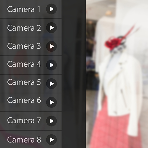 CCTV Camera Technology