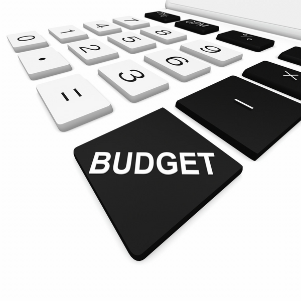 Budget calculator icon